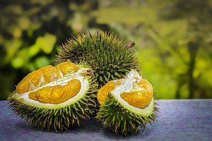 Ilustrasi durian yang enak dan manis