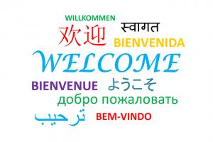 Bahasa asing terhadap nasionalisme, pro kontra bahasa asing, pengaruh pro kontra nasionalisme